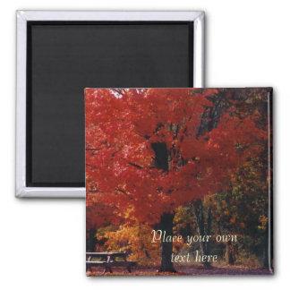 NH-Herbstparkmagnet fertigen es besonders an Quadratischer Magnet
