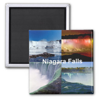 Niagara Falls New York Kühlschrankmagnet
