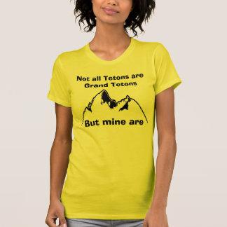 Nicht alles Tetons sind großartiges Tetons, BU… T-Shirt