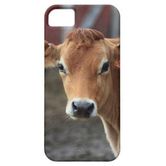 Nicht denken Sie mich sind hübsche Jersey-Kuh Etui Fürs iPhone 5
