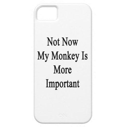 Nicht jetzt ist mein Affe wichtiger iPhone 5 Etui