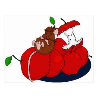 Nickerchen machen auf Äpfeln Postkarte