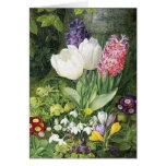 Niederländische Birnen-Frühlings-Blumen Grußkarten