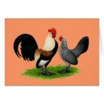 Niederländische Zwerghühner:  Sahnehellbraunes Grußkarten
