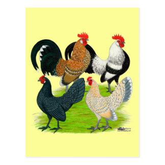 Niederländisches kleines Quartett Postkarte