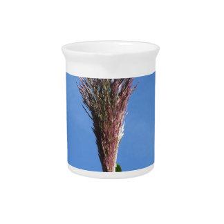Niederlassung der riesiges REEDPflanze mit Blume Krug