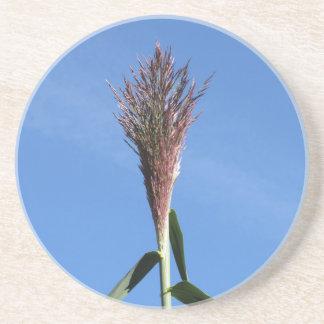 Niederlassung der riesiges REEDPflanze mit Blume Untersetzer