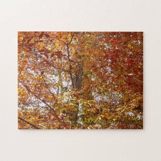 Niederlassungen der orange Blätter-Herbst-Natur Puzzle