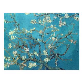 Niederlassungen mit Mandel-Blüte - Van Gogh Postkarte