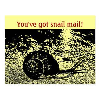 Niedlich haben Sie snail mail! Postkarte