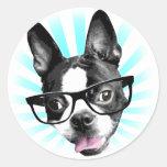 Niedlich! Hipster-Boston-Terrier Aufkleber