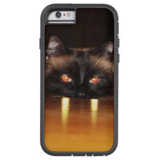 Niedlich, lustig, Vampirekatze Tough Xtreme iPhone 6 Hülle