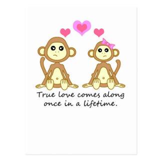 Niedliche Affen - wahre Liebe kommt entlang einmal Postkarte