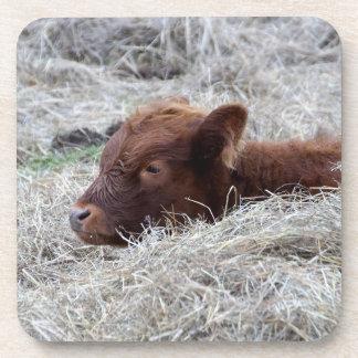 Niedliche Baby-Kalb-Kuh, harte PlastikUntersetzer Untersetzer
