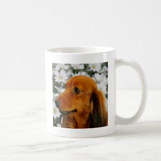 Niedliche Dackel (Brown langhaarig) in den Blumen Kaffeetasse