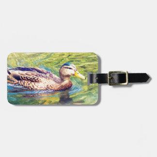 Niedliche Enten-Schwimmen Gepäckanhänger