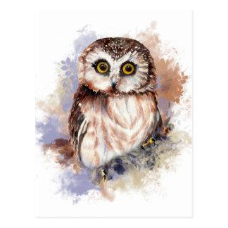 Niedliche Eule - Watercolor-Vogel-Sammlung Postkarte