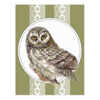 Niedliche Eule - Watercolor-Vogel, wild lebende Postkarte