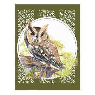 Niedliche Eule - Watercolor-Vogel wild lebende Postkarten