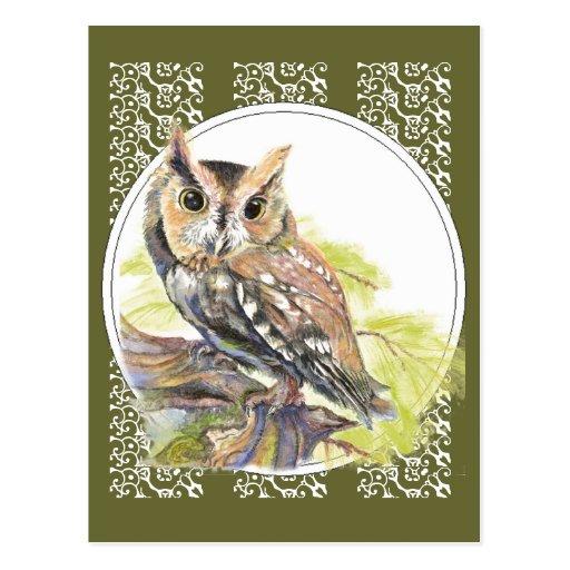 Niedliche Eule - Watercolor-Vogel, wild lebende Postkarten