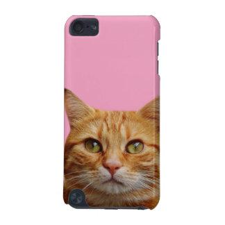Niedliche Fotografie des Katzenhaustiertieres iPod Touch 5G Hülle