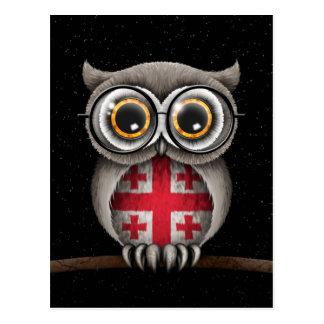 Niedliche georgische Flaggen-Eulen-tragende Gläser Postkarte