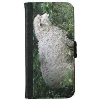 Niedliche gierige Schafe, die iPhone Kasten essen iPhone 6 Geldbeutel Hülle