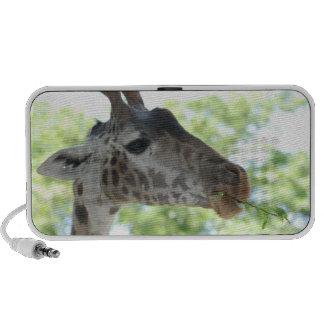Niedliche Giraffe Notebook Speaker
