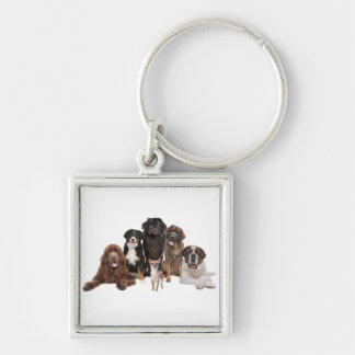 niedliche Hunde Silberfarbener Quadratischer Schlüsselanhänger