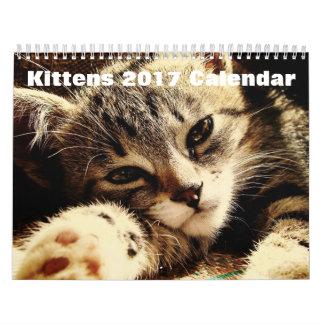 Niedliche Kätzchen 2017 Wandkalender