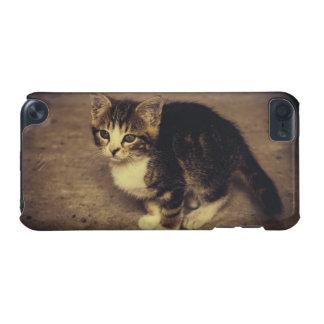 Niedliche Kätzchen-Fotografie, Baby-Tier iPod Touch 5G Hülle