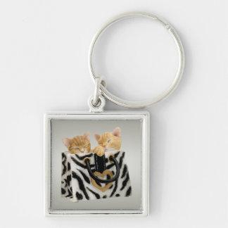 Niedliche Kätzchen in der Zebra-Druck-Handtasche K Schlüsselband