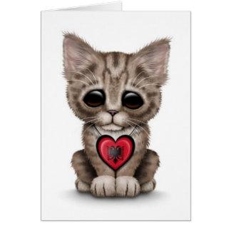 Niedliche Kätzchen-Katze mit dem albanischen Karten