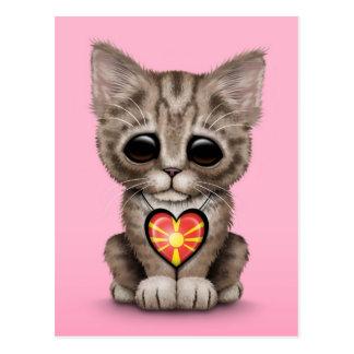 Niedliche Kätzchen-Katze mit dem mazedonischen Postkarte
