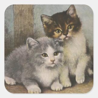 Niedliche Kätzchen Quadratischer Aufkleber