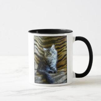 Niedliche Kätzchen und Tigerstreifen-Tasse Tasse