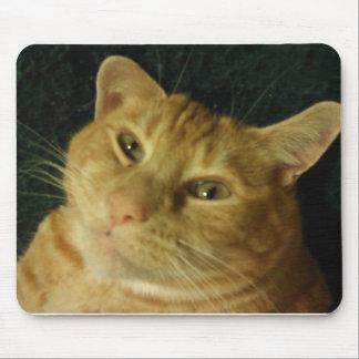 Niedliche Katze, die gerade um ..... lazying ist Mousepad