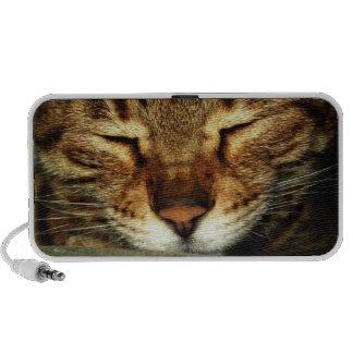 Niedliche Katze Reise Speaker