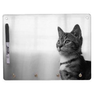 Niedliche Katze Trockenlöschtafel Mit Schlüsselanhängern