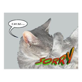 Niedliche Katzen-Entschuldigungs-Postkarte Postkarten