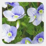 Niedliche, kleine blaue Blumen Quadratischer Aufkleber