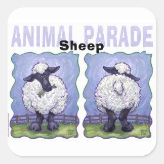 Niedliche Köpfe und Schwanz-Schafe Quadratischer Aufkleber