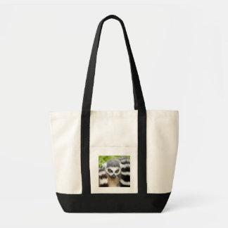 Niedliche Lemur Stripey Schwanz-Schwarz-Tasche Tragetasche