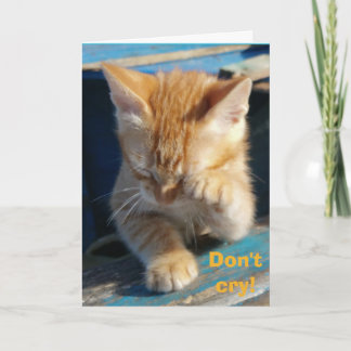 Cute Funny Cat Happy Birthday Greeting Card