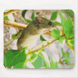 Niedliche Maus Mousepads