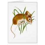 Niedliche Mäuse, Mäusewatercolor-Tiernatur Grußkarten