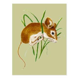 Niedliche Mäuse, Mäusewatercolor-Tiernatur Postkarten