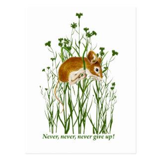 Niedliche Mäusemotivierend Zitat geben nie auf Postkarten