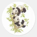 Niedliche Pandas Runde Sticker