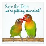 Niedliche Papageien-Liebe-Vögel tropisch Save the Quadratische 13,3 Cm Einladungskarte